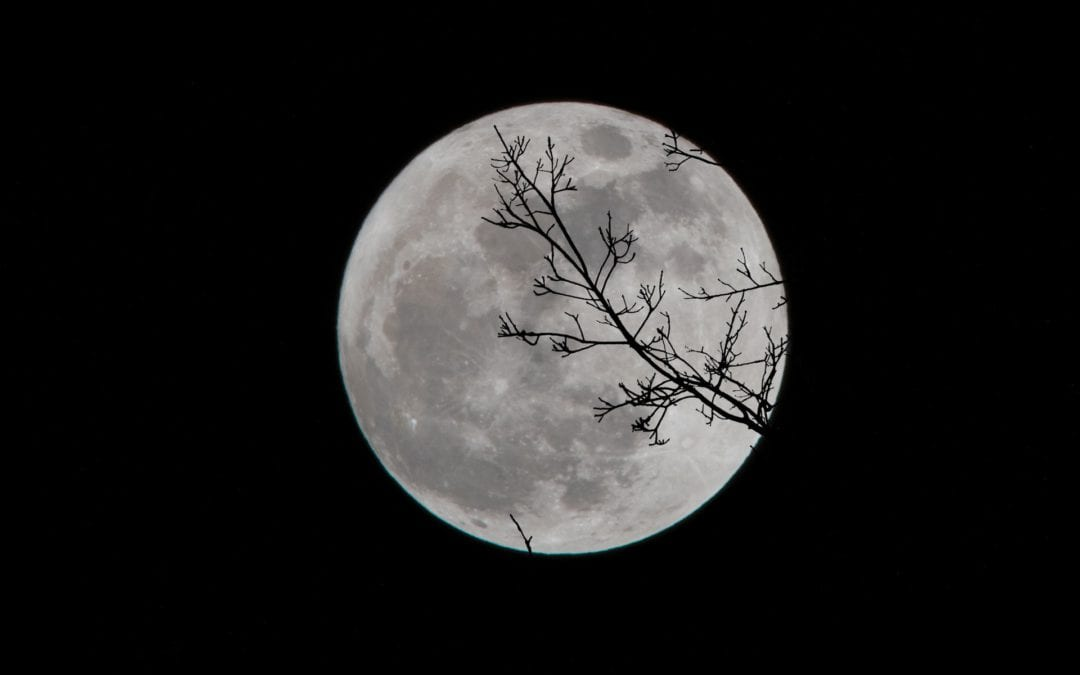 First Full Moon 2021